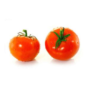 עגבניה