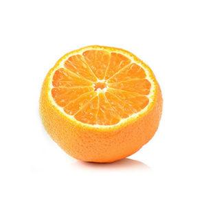 תפוז ברשת (לסחיטה)